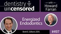 497 Energized Endodontics with Brett Gilbert : Dentistry Uncensored with Howard Farran