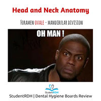 Which foramen is the opening for the mandibular division of the trigeminal nerve?