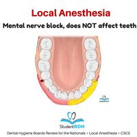 Q: The mental nerve block anesthetizes the: